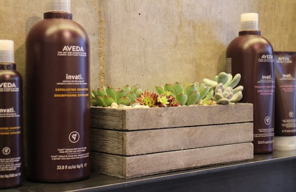 Review of Aveda Institute, London