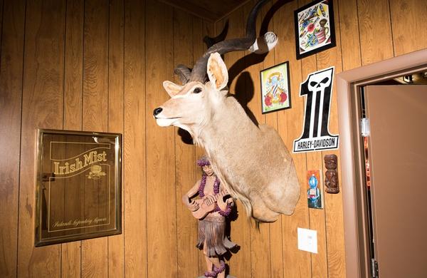 Deer head barbershop