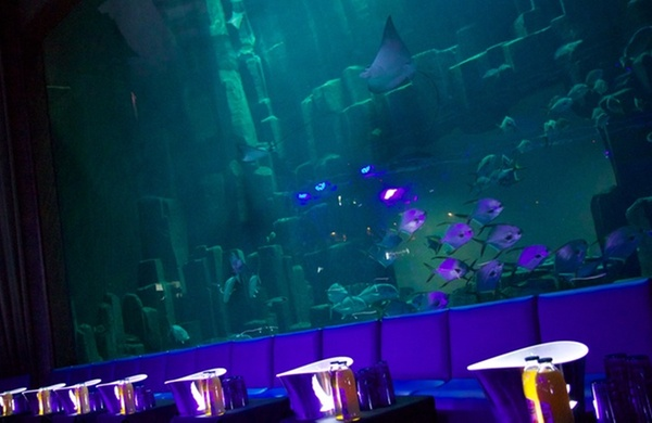 Club Aquarium