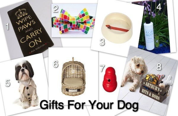 8 Christmas Gifts for the Dog in Your Life