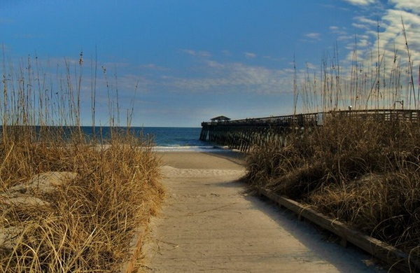 Myrtle Beach State Park South Carolina