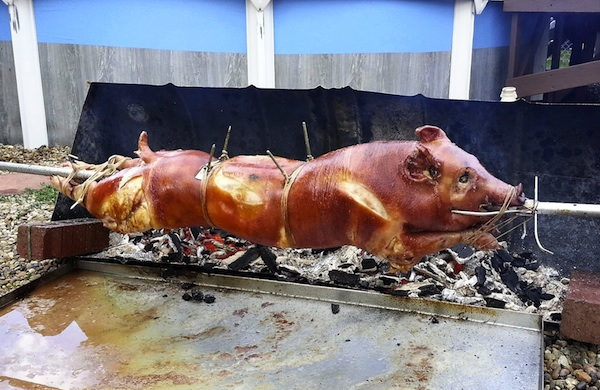 Things-to-do-in-Seattle-week-of-july-21-2014-pig_600c390