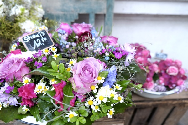Küchenblume Hamburg