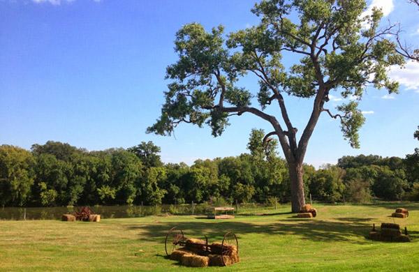 Fall Fun at Austin Area Farms
