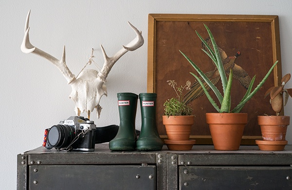 inside-the-photogenic-home-of-two-pro-photographers_antlers_600c390