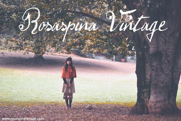 Il vintage a Torino raccontato da Ale RosaspinaVintage
