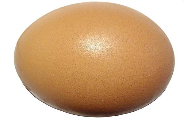 subways-flatizza-recalculates-the-shape-of-food_egg_600c390
