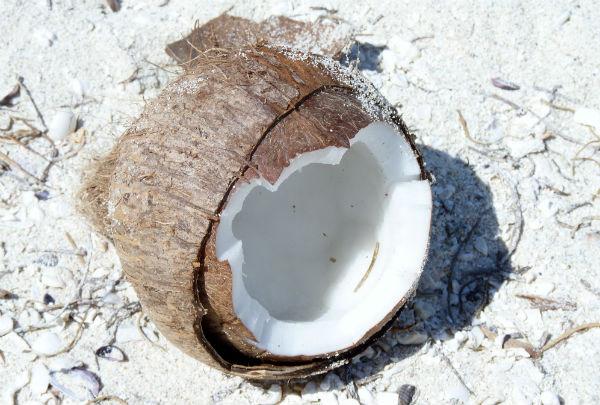 L'huile de coco : tous les bienfaits de ce produit miracle