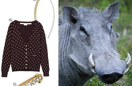 Dress to Impress a Warthog