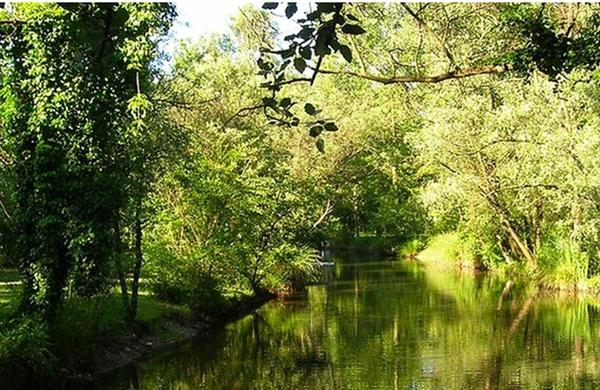 Parco Ittico
