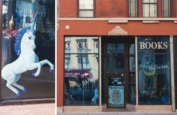 I Went to Meet My Spirit Guide at Wicker Park's Occult Bookstore and Found a Unicorn Instead