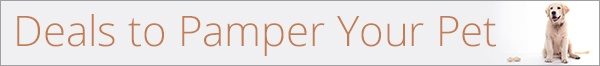 Pamper Your Pet Banner