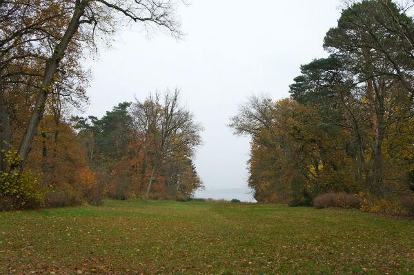 Baden verboten: Naturschutzgebiet Pfaueninsel
