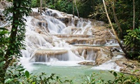Jamaica s Dunns River Falls