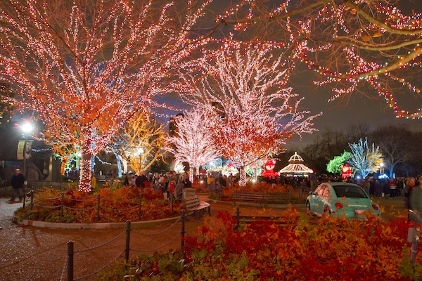 Lincoln Park Zoo Lights Festival