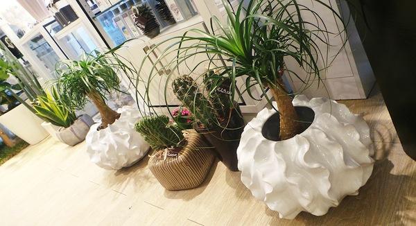 fiorai e flower designer a bari: i 5 che vi faranno innamorare - Idee Arredamento Negozio Fiori