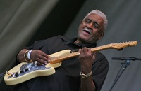 Chicago Blues Festival  guitar player