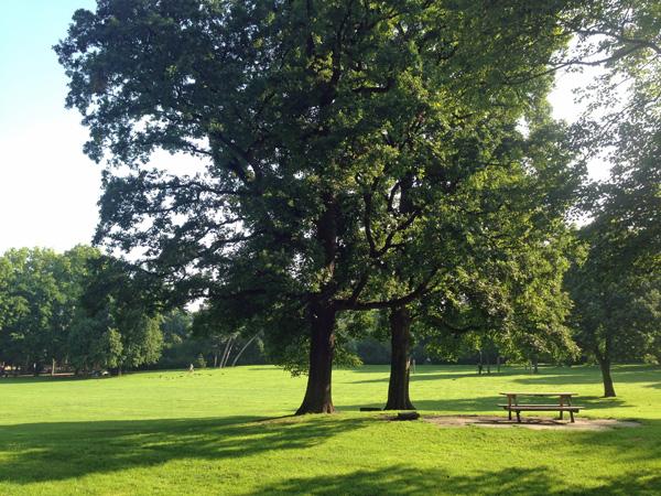 Parks in Köln: Volksgarten-Südstadt