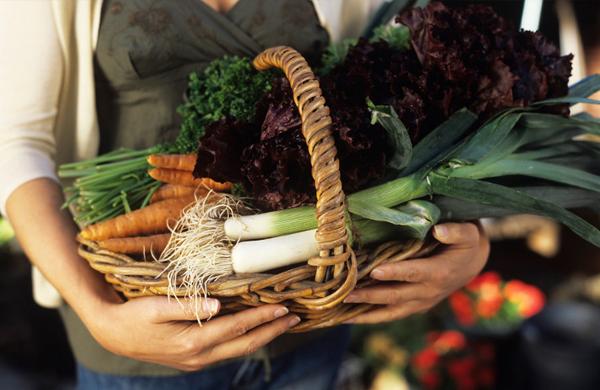Cómo encontrar alimentos ecológicos con garantía