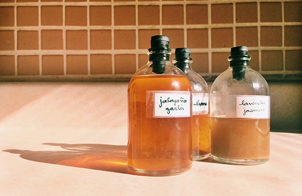 guide to bitters tiny bottles