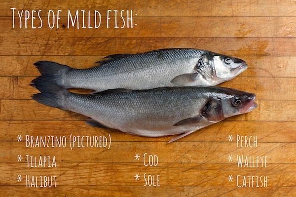 different types of fish you can eat