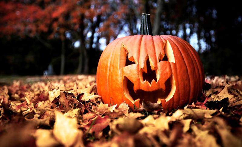 Halloween in Italia, idee su cosa fare e dove andare
