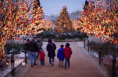 Five Things to Do This Weekend: December 6–8