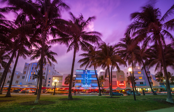 Find great local, shopping and travel deals at 50 to 90% off in Miami Beach, FL. 25% Cash Back at Yeung's Chinese Restaurant. 5% Cash Back at Frieze Ice Cream Factory. 25% Cash Back at Andina Miami Beach.