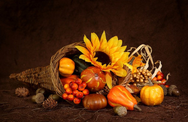 Pre-Thanksgiving Twitter Roundup