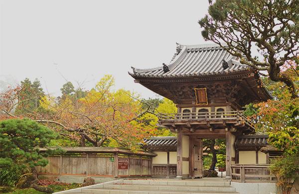 japanese_tea_garden_600c390