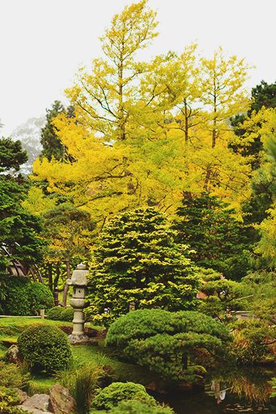 japanese_tea_garden_3_400c390