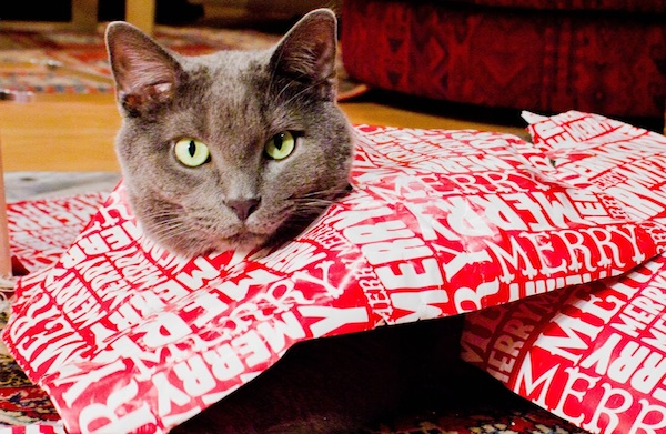 gift-bags-are-for-the-weak_cat_600c390