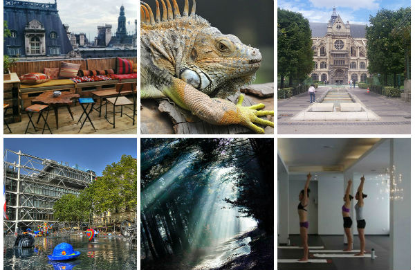 Top 15 des choses à faire à Paris selon nos blogueurs