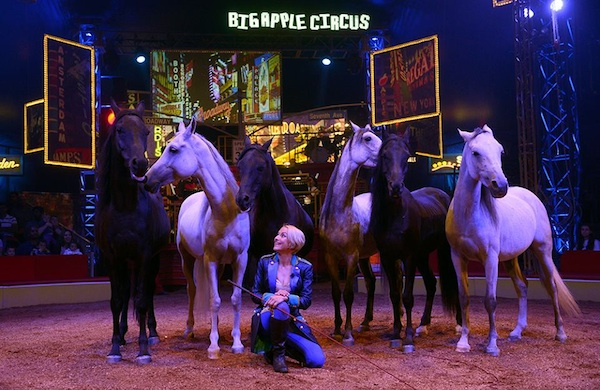 Things-to-Do-in-DC-Saturday-September-13-to-Friday-September-19-horsecircus_600c390
