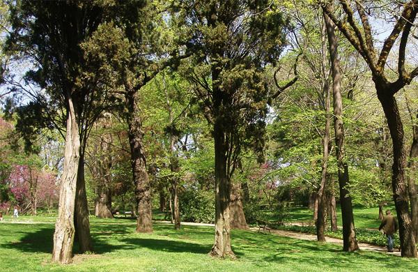 El parque del Capricho de Madrid