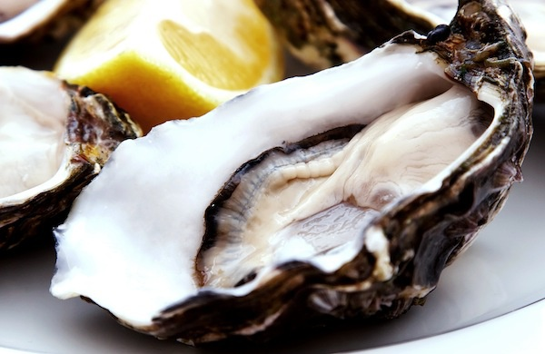 nyc_oysters_600c390