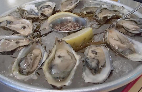 blogger_city_guide_sf_oysters_cafedesamis_600c390