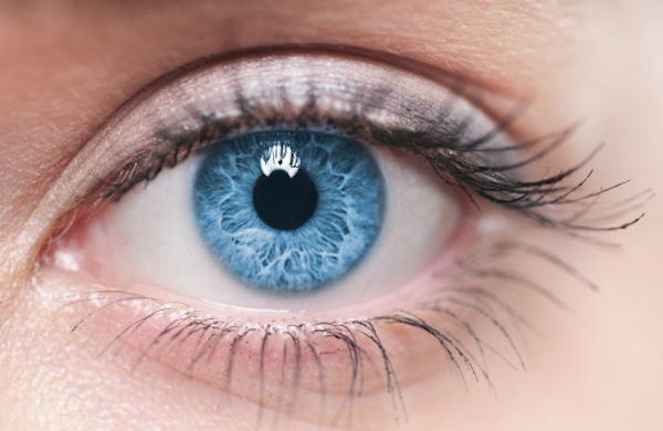 Partnering With Your Eye Doctor