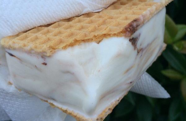 5 gelaterie particolari e uniche di Firenze