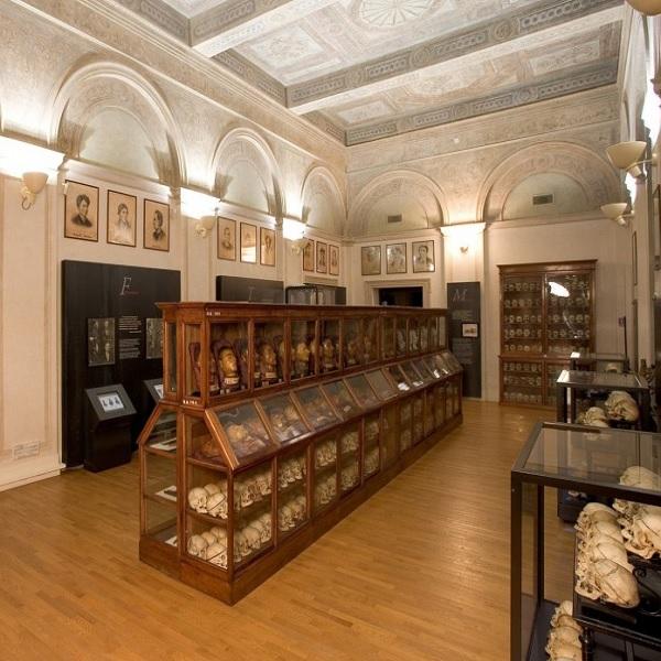 Museo Cesare Lombroso: il crimine in mostra a Torino
