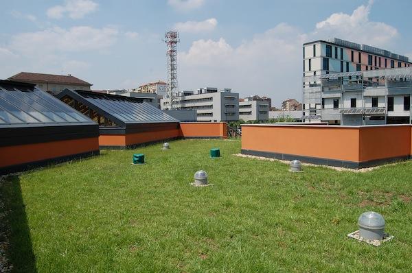 tetto verde PAV Torino