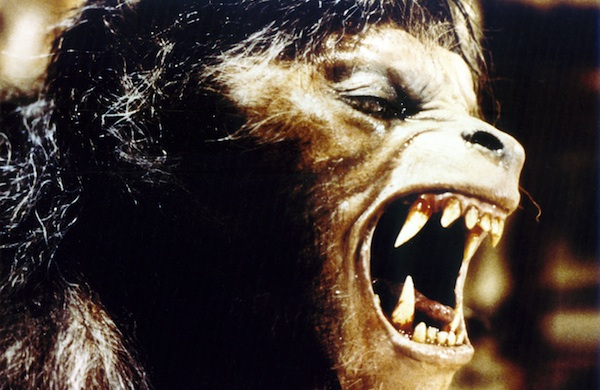 scary-movies-movie-marathon-curators-pick-their-favorites-america-werewolf_600c390