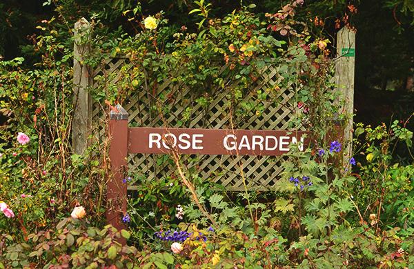 rose_garden_600c390