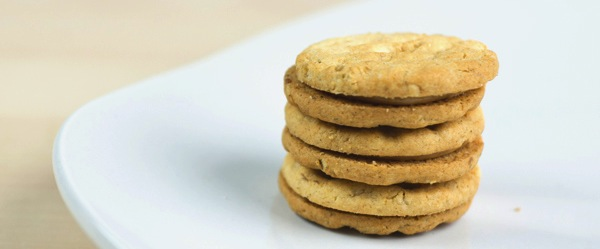 Girl_Scout_peanut-butter-sandwich_600c249