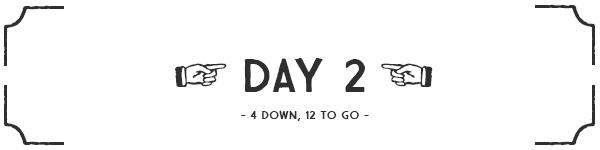 Day 2 banner