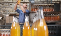 Man inspecting cider bottle