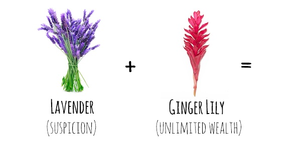 Flower Meanings  Lavender   Ginger Lily