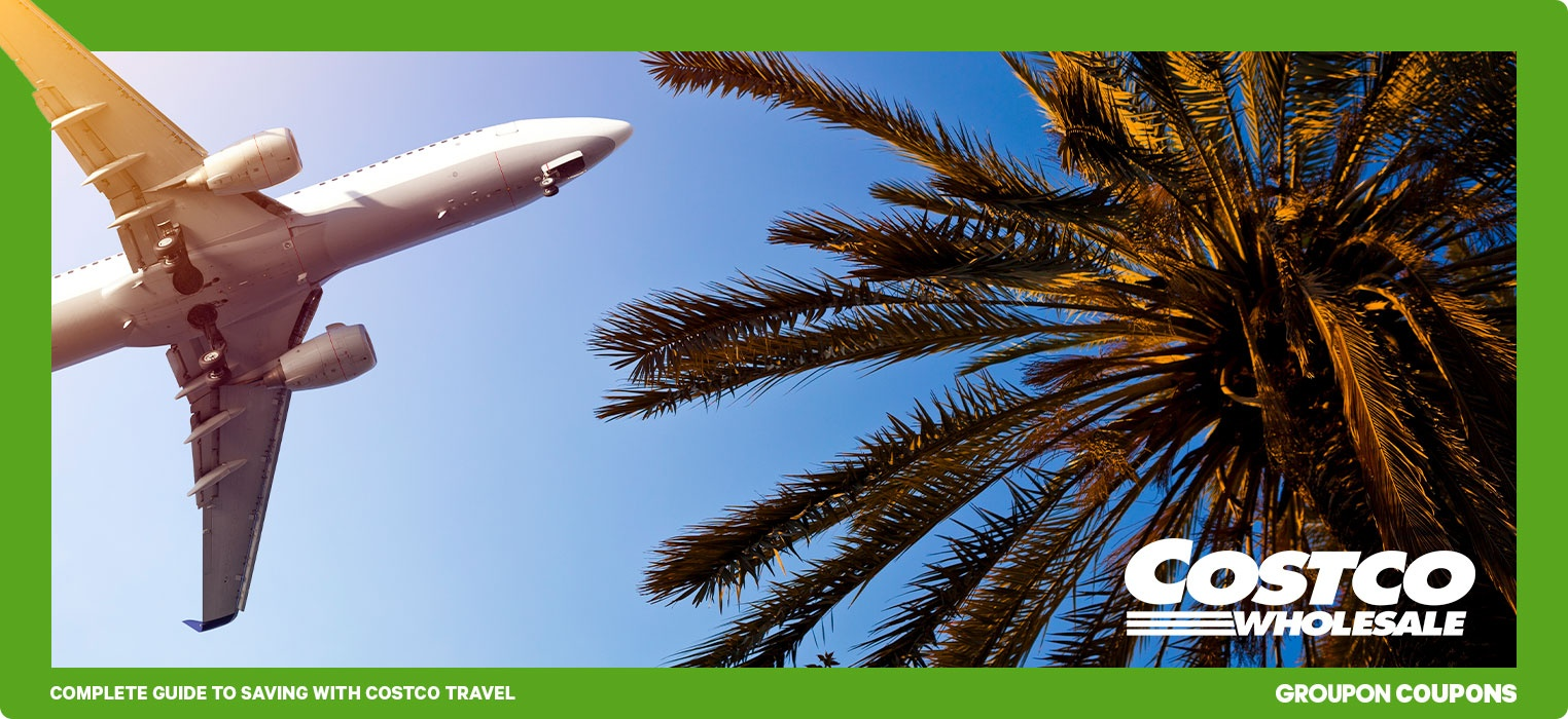 Plane flying over a palm tree