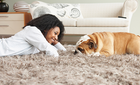 Seattle Carpet Cleaning Deals In Seattle Wa Groupon
