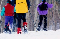 Things to Know Before You Go Cross Country Skiing  thumbnail